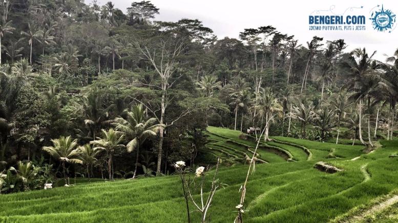 PRILIKA: Na Bali za 473 eura!